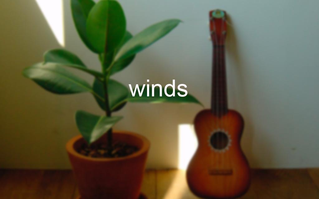 03-winds